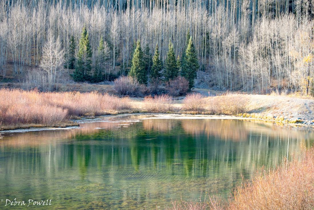 102320 Priest Lake_-49 (2)